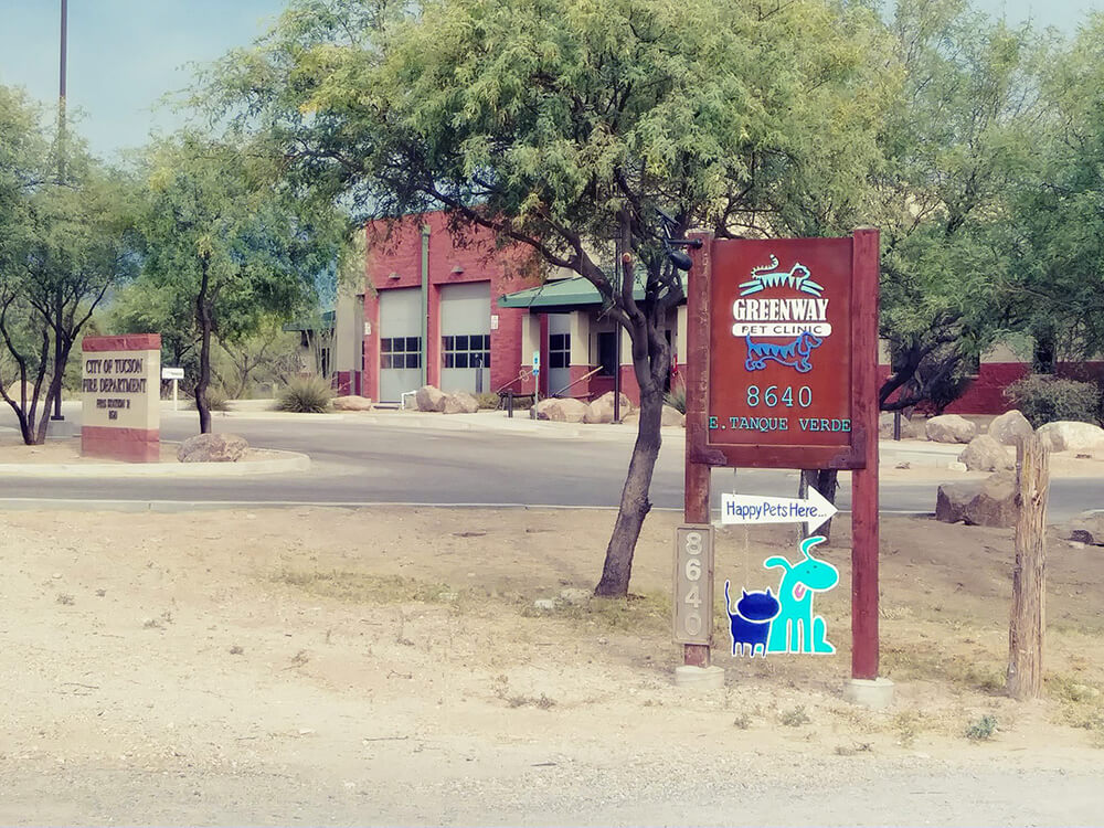 Greenway Pet Clinic Tucson 2